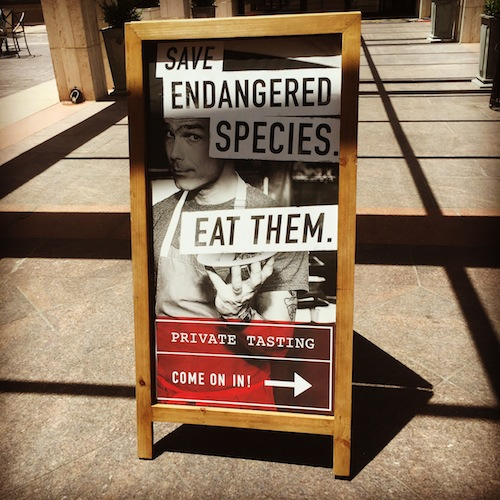 what-is-endanged-eats
